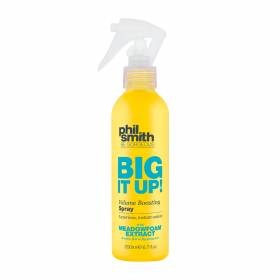 Big It Up! Volume Boosting Spray Phil Smith - Spray de Volume